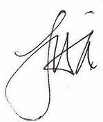 lisa-only-signature